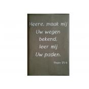 Hoes Huisbijbel 16x24 lichtbruin met tekst Psalm 25:4 in wit